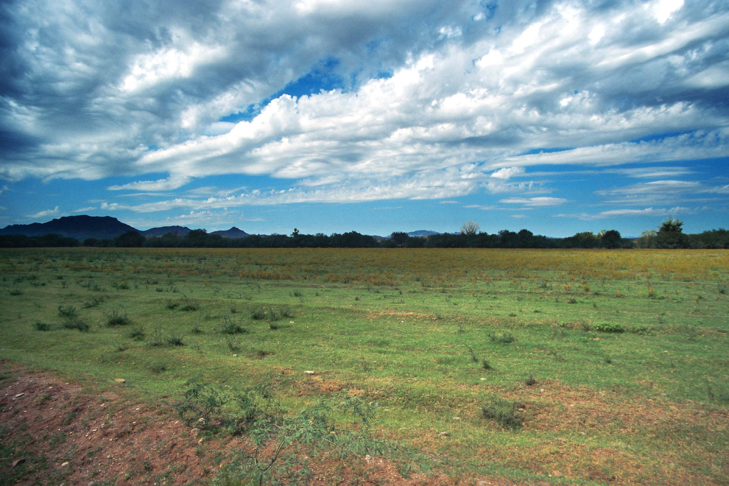 Ecolonomics – How Ecological Economics Can Improve Our Lives