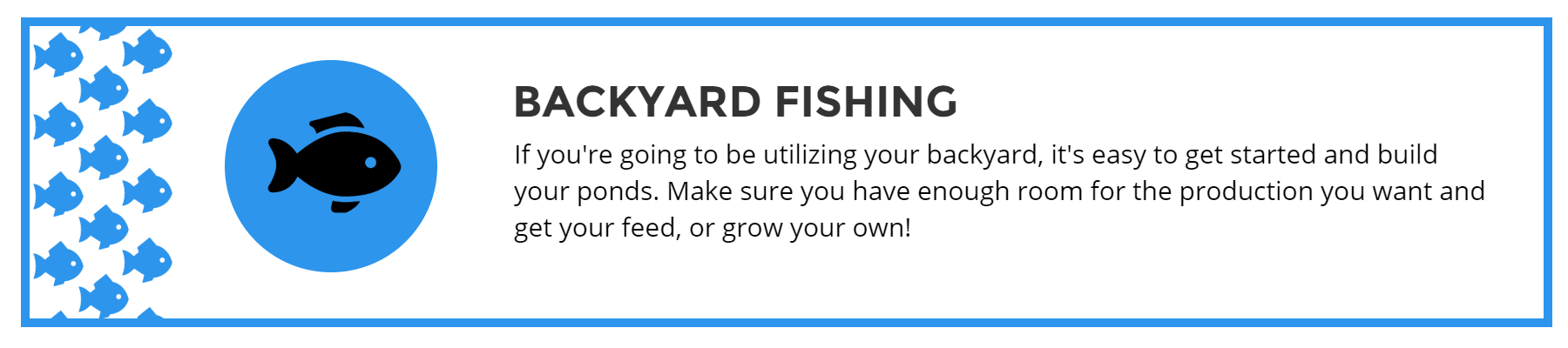 How To Start Your Own Fish Farming Business | Institute of Ecolonomics