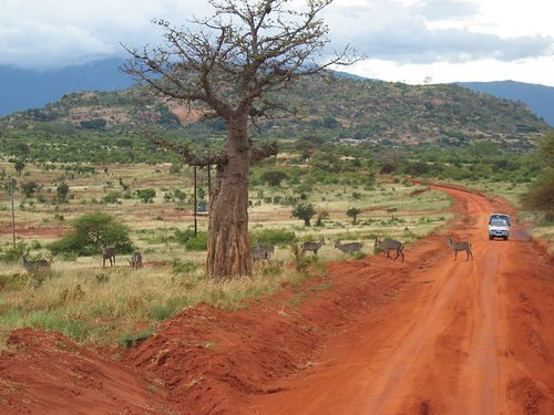 Challenges of Third World Economic Development