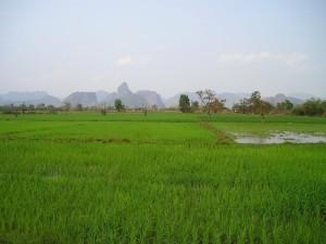 laos-451_1280