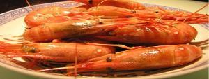 shrimp marketing banner