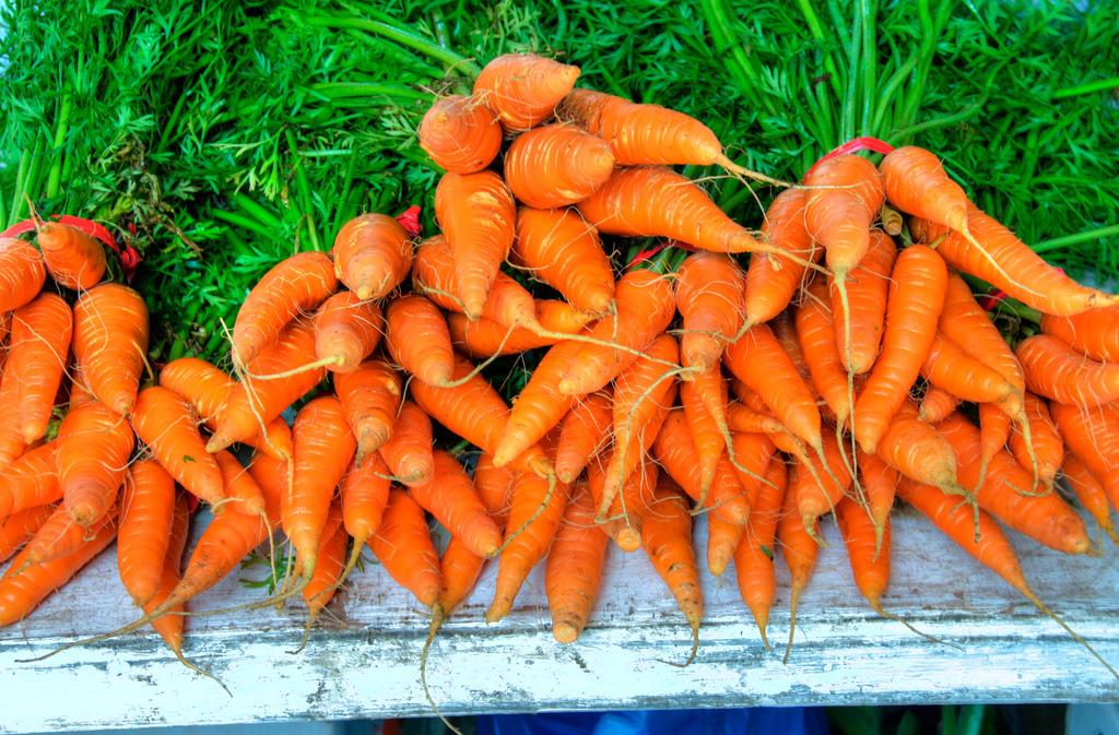 6 Sustainable Urban Agriculture Ideas Around the Globe
