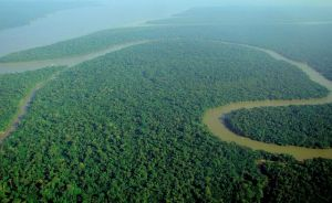 640px-Aerial_view_of_the_Amazon_Rainforest