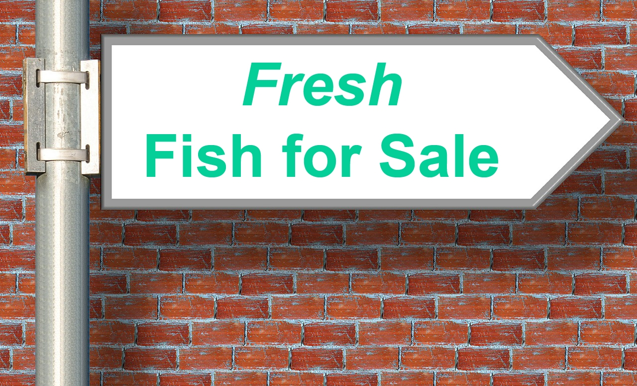 5 Things to Consider Before Starting a Fish Farming Business
