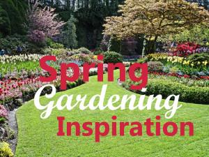 SpringGardeningBlog