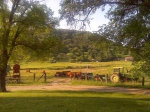 rural-684777_1280