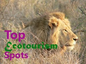 EcotourismSpotsBlog