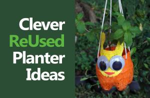 CleverPlantersBlog