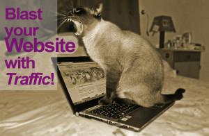 WebsiteTrafficBlog