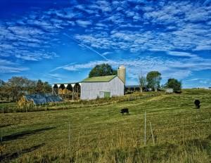 farm-398846_1280