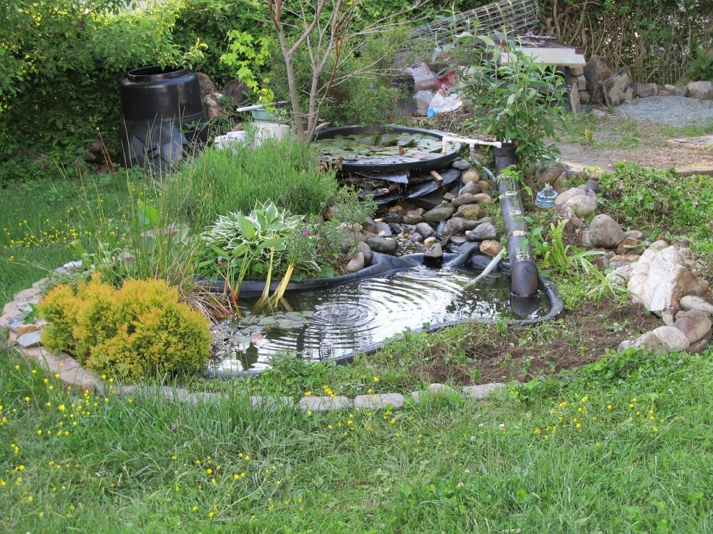 pond-722926_1280