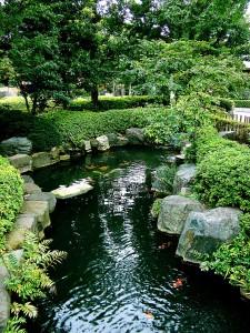 japan-74424_1280