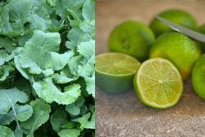 kayle + Lemon
