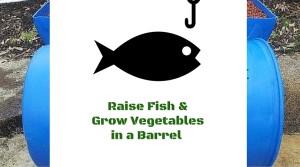 fish farm barrel