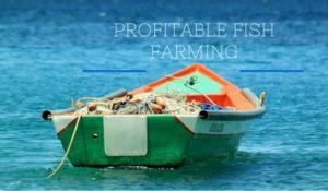 Profitable Fish Farming