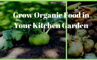 Grow Organic Food in Your Kitchen Garden