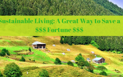 Sustainable Living: A Great Way to Save a Fortune