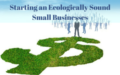 Starting an Ecologically Sound Small Businesses