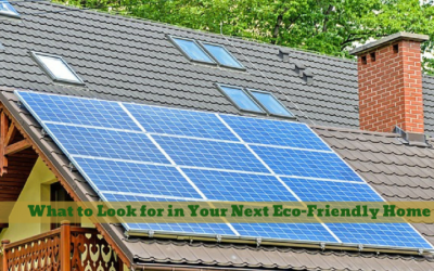 What to Look for in Your Next Eco-Friendly Home