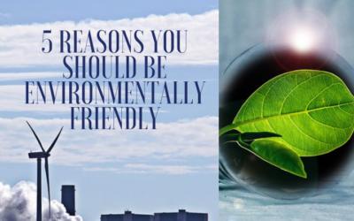 5 Reasons You Should Be Environmentally Friendly